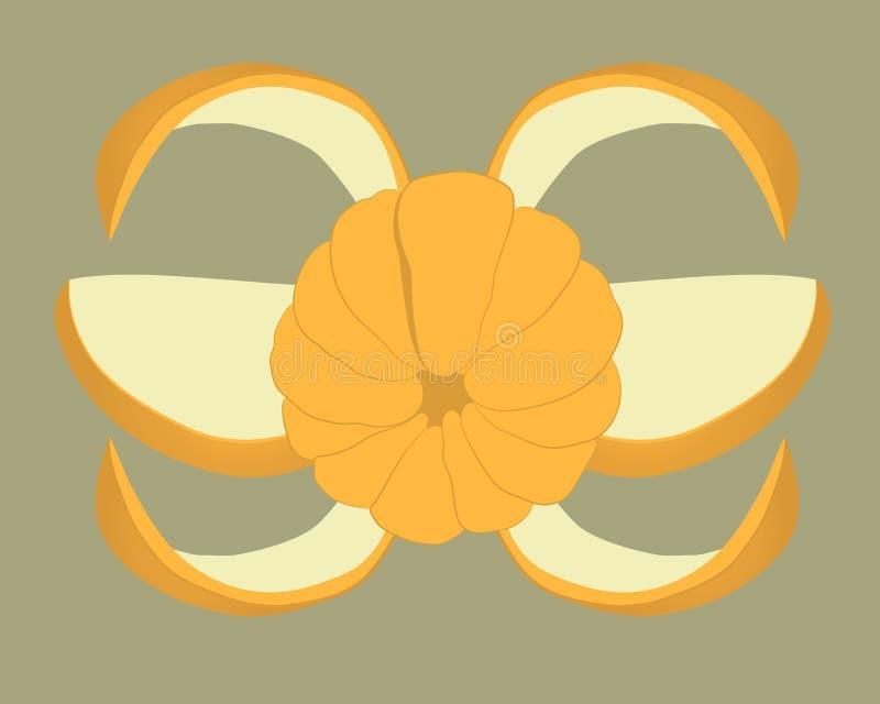 Tranches de mandarine Illustration de dessin de vecteur de fruit illustration stock