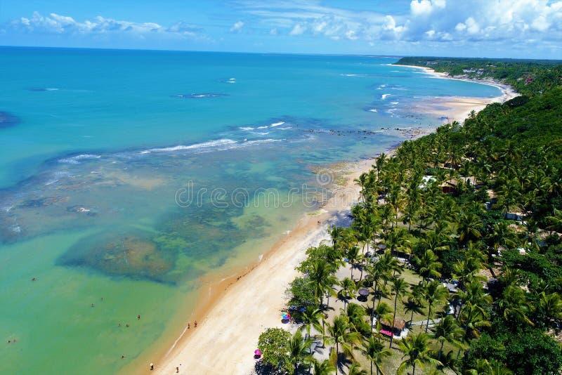 Trancoso, Bahia, Brazilië: Weergeven van mooi strand met kristalwater en de aanplanting van de kokospalm stock afbeelding