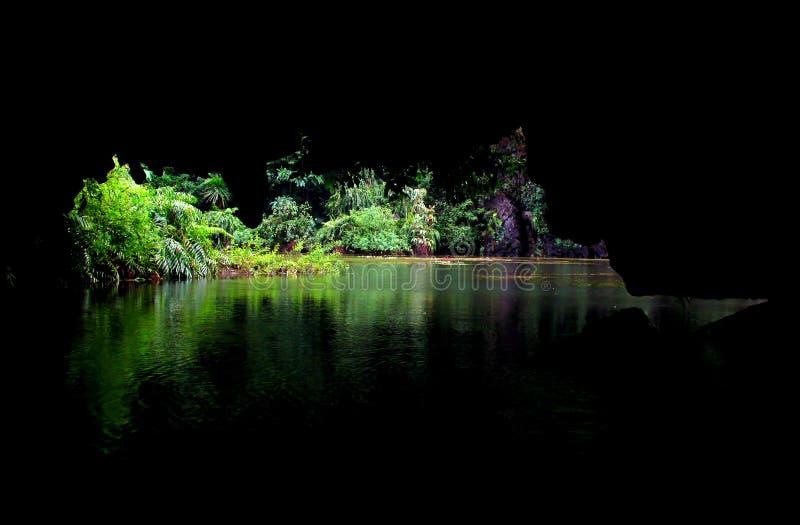 Trang σπηλιές στο Βιετνάμ στοκ εικόνα με δικαίωμα ελεύθερης χρήσης