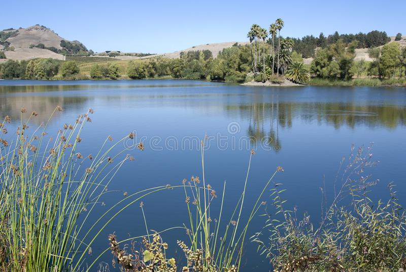 Download Tranquil blue lake stock photo. Image of blue, mediterranean - 8099662