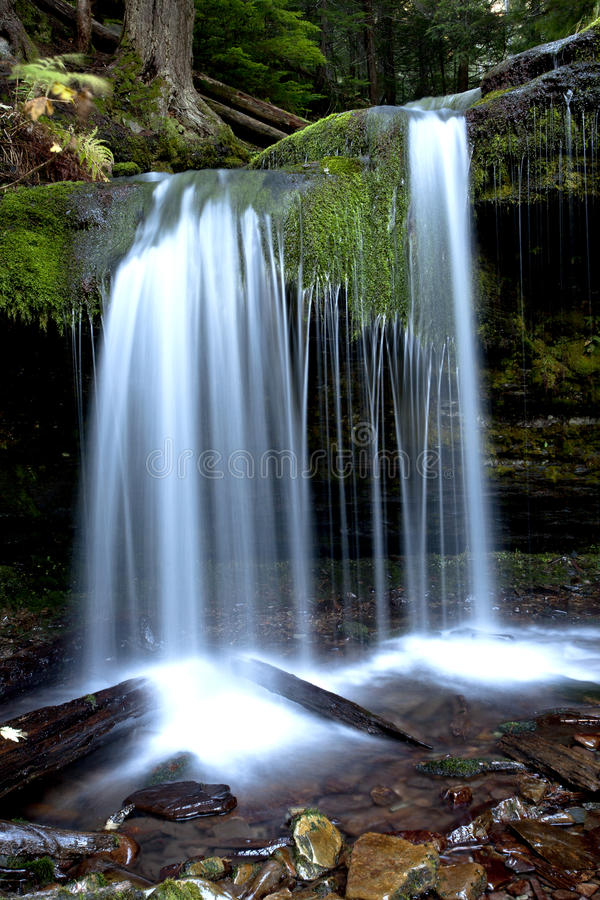 The tranquil Fern Falls. royalty free stock photography