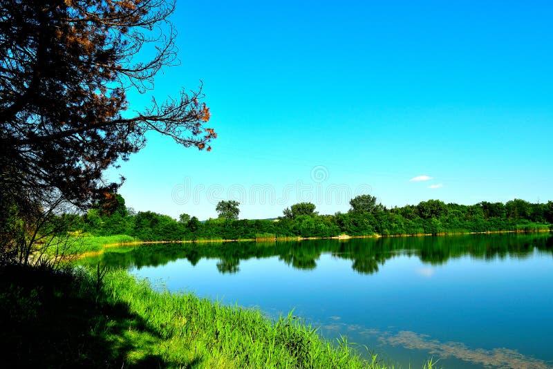 Tranquil lake royalty free stock photo