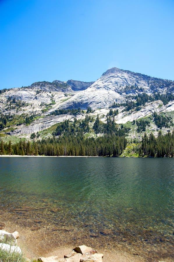 Download Tranquil lake in Yosemite stock photo. Image of tree - 22279910