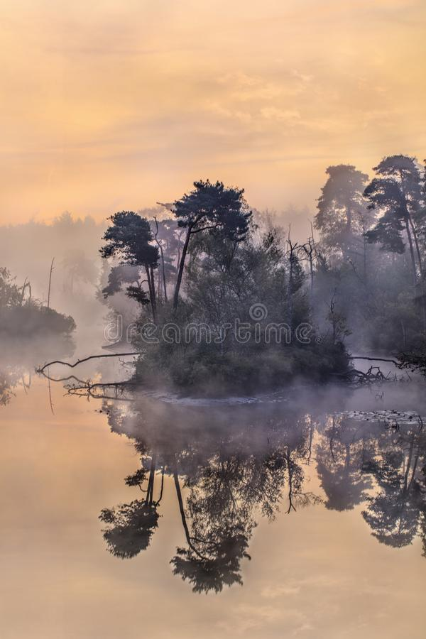 Tranquil misty lake at dawn, south of the Netherlands. Tranquil misty lake at dawn in the south of the Netherlands stock photography