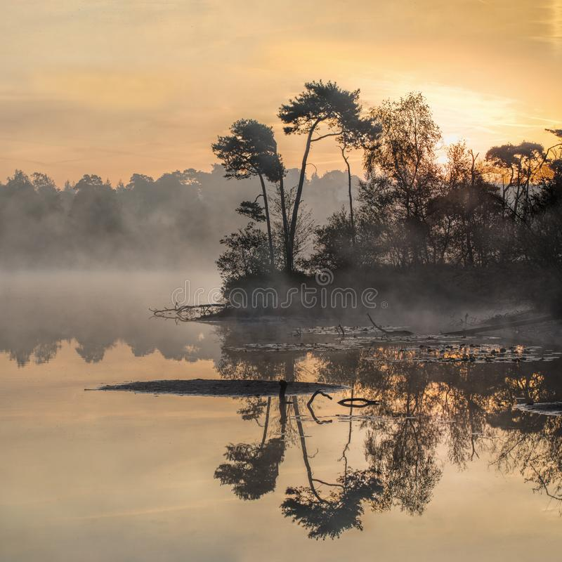 Tranquil misty lake at dawn, south of the Netherlands. Tranquil misty lake at dawn in the south of the Netherlands royalty free stock images