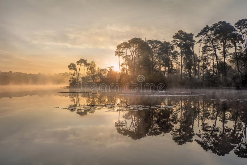 Tranquil misty lake at dawn, south of the Netherlands. Tranquil misty lake at dawn in the south of the Netherlands stock image