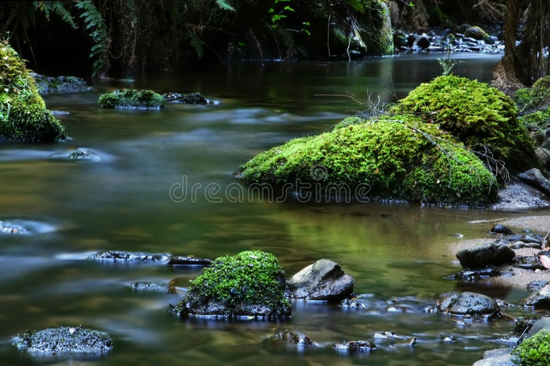 Tranquil River. Tranquil, softly-flowing river, with moss-covered boulders royalty free stock photo