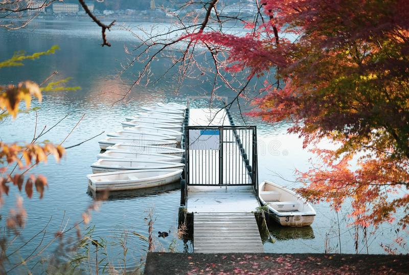 Tranquil scene of dock water and group of boats in autumn stock photo