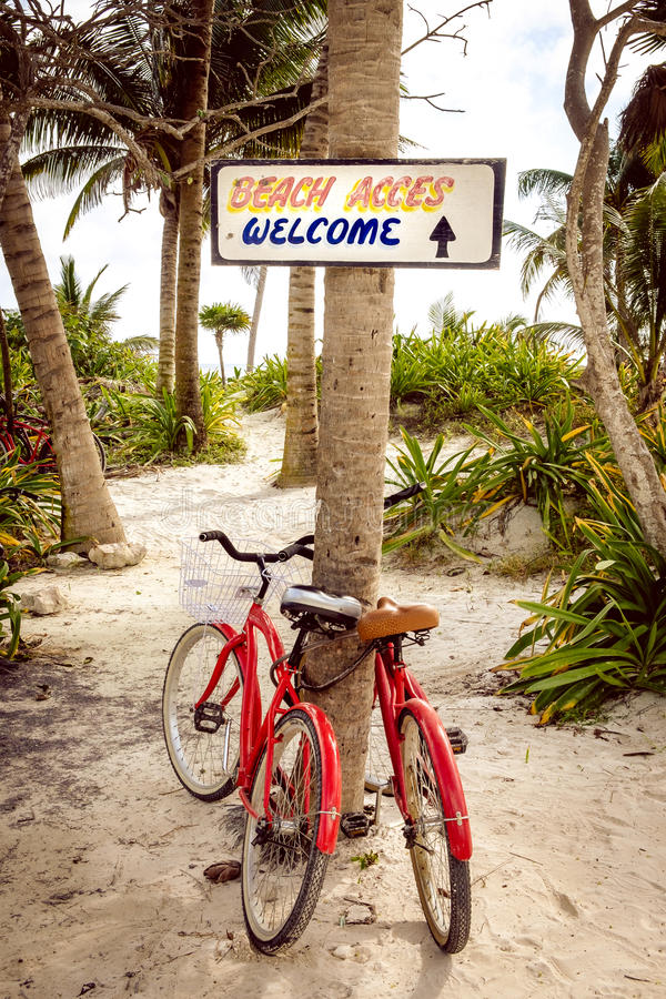 Tranquil scene with two bicycles, beach and palms royalty free stock photo