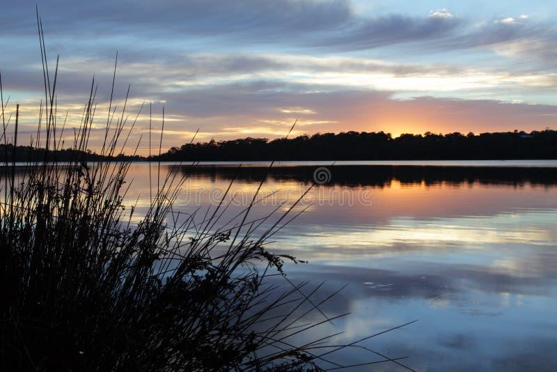 Tranquilidad en los lagos Narrabeen foto de archivo libre de regalías