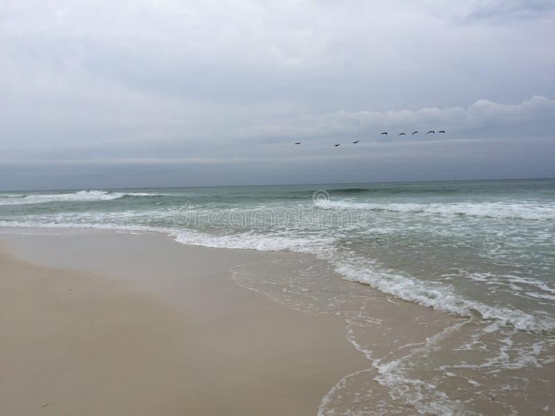 Tranquilité au rivage photo stock