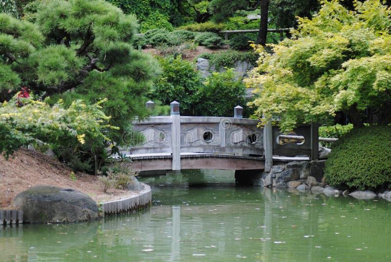 Download Tranquility stock photo. Image of green, lake, botanical - 18087932