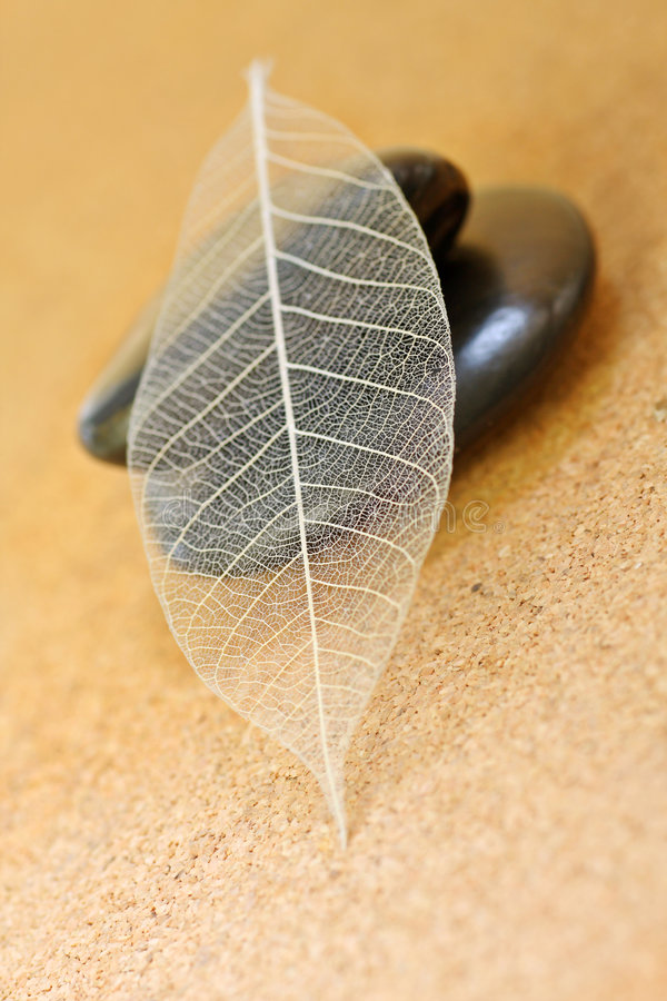 Download Tranquility Stock Image - Image: 6112371