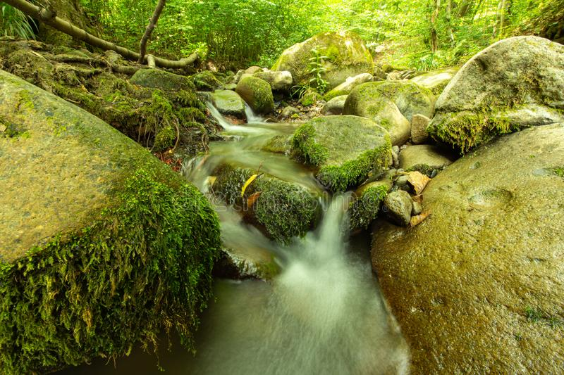 Tranquility river water in the mountain forest. Tranquility river water flowing gently and peacefully in the mountain green forest with big rocks stock photo