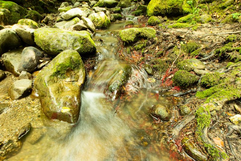 Tranquility river water in the mountain forest. Tranquility river water flowing gently and peacefully in the mountain green forest with big rocks royalty free stock photo