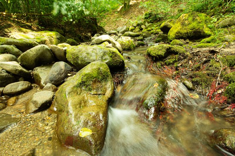 Tranquility river water in the mountain forest. Tranquility river water flowing gently and peacefully in the mountain green forest with big rocks royalty free stock photography