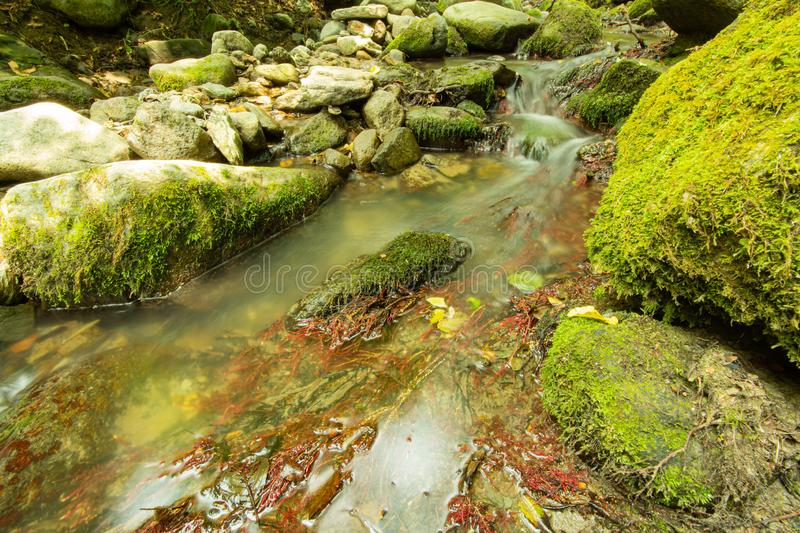 Tranquility river water in the mountain forest. Tranquility river water flowing gently and peacefully in the mountain green forest with big rocks stock image