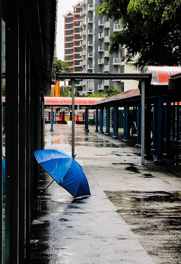 Tranquillità dopo la tempesta fotografie stock