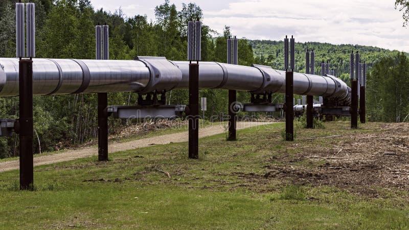 Trans-Alaska-Ölpipeline-Standpunkt nördlich von Fairbanks lizenzfreies stockfoto