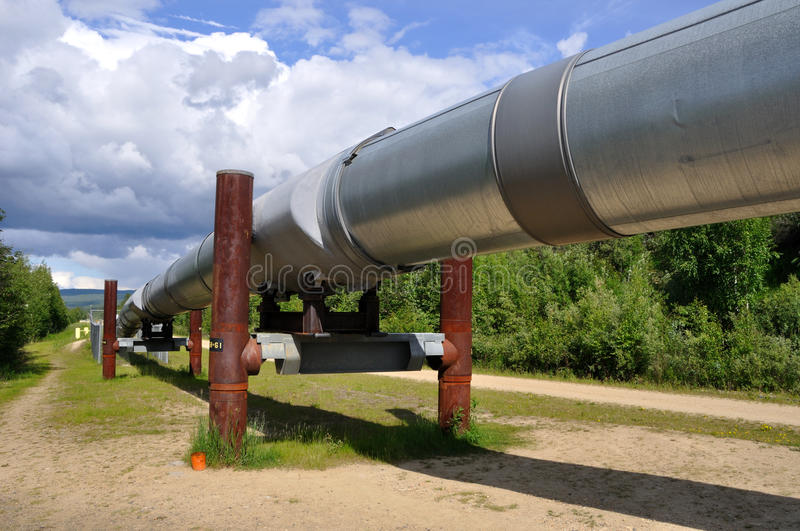 Trans Alaska Oil Pipeline. Near Fairbanks royalty free stock images
