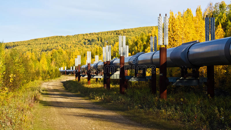 Trans-Alaska Pipeline in Autumn stock photo