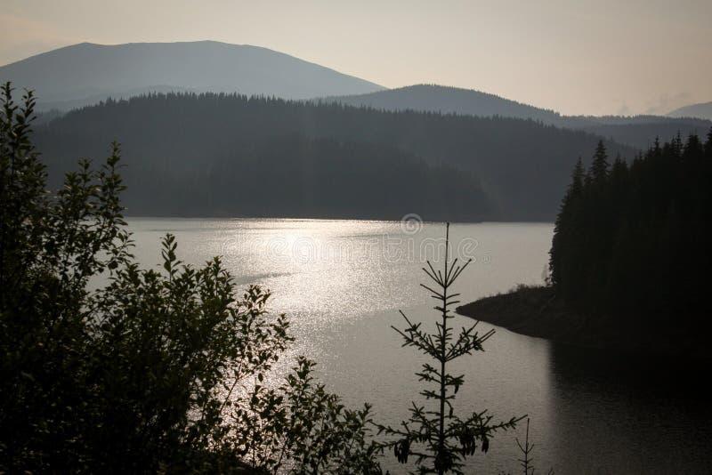 Transalpina solig dag, bergflod royaltyfria bilder