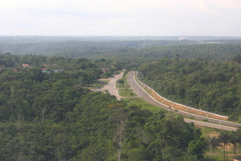 transamazonic的高速公路 免版税库存图片