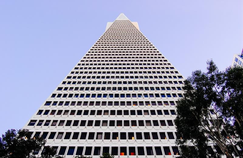 Transamerica-Pyramiden-Geb?ude lizenzfreies stockfoto