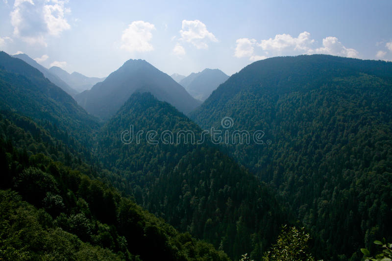 Download Transfagarasan stock image. Image of trees, nature, landscape - 9530785