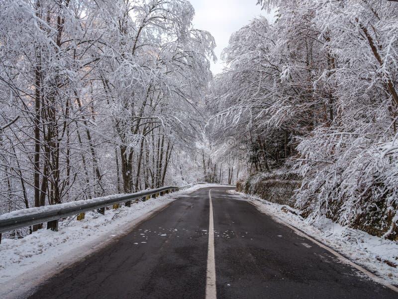 Transfagarasan-Landstraße in Rumänien lizenzfreie stockfotografie