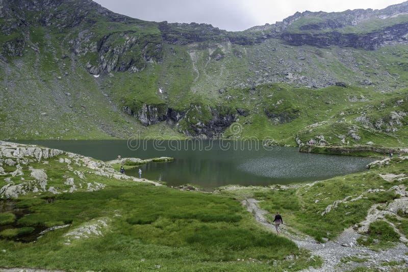 Transfagasan Romania, Europe, halna droga w Carpathians zdjęcia royalty free
