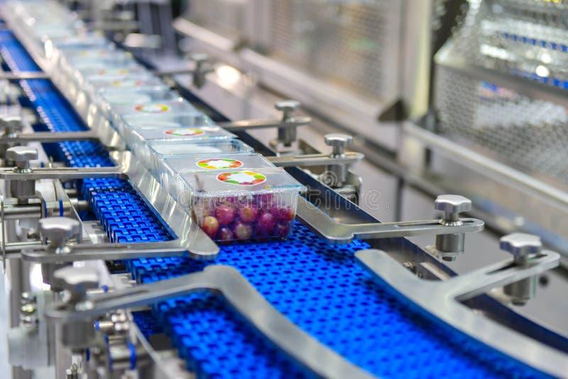 Transferencia de las cajas de los productos alimenticios en industrial automatizada fotografía de archivo
