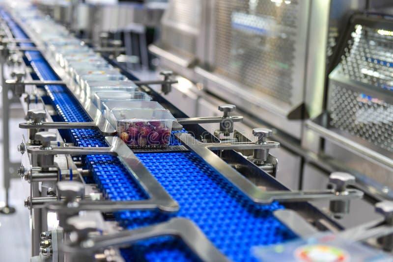 Transferencia de las cajas de los productos alimenticios en transportador automatizado imagenes de archivo