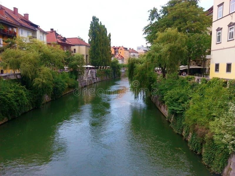 TRANSFERRINA, SLOVENIA - LUGLIO 2014: Transferrina - la Slovenia - centro urbano, vista sul fiume fotografie stock libere da diritti