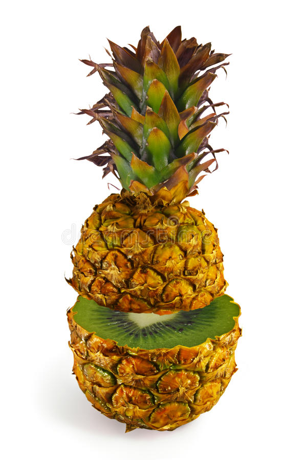 Download The Transformation Of Pineapple In Kiwi Stock Image - Image: 14851379