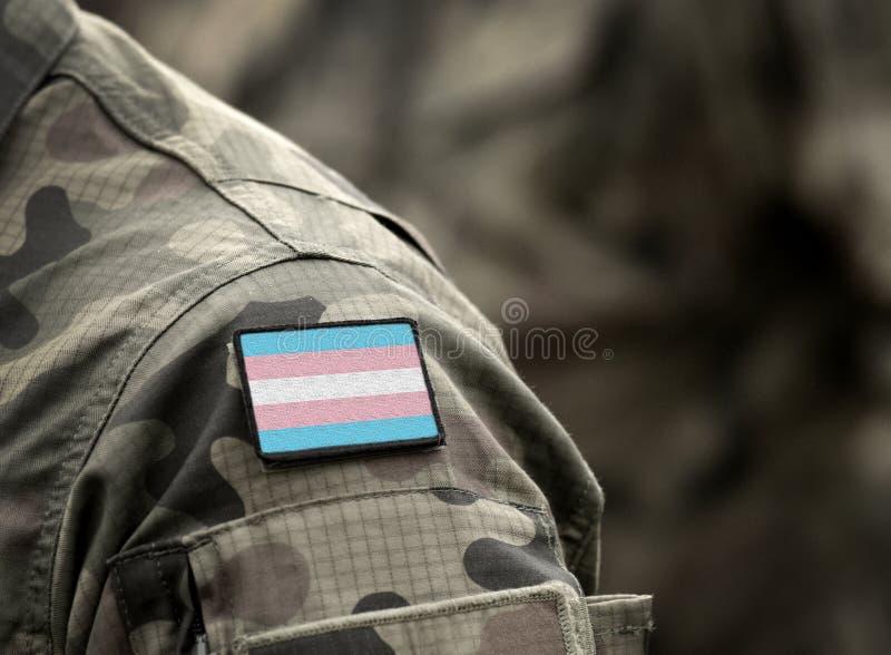 Transgender Pride-flagga på militär uniform Integrering, diskriminering Samla arkivbild