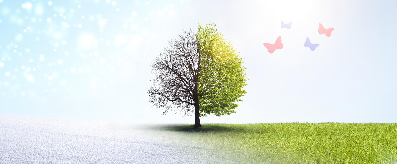 Transition of Season. In Landscape royalty free stock photography