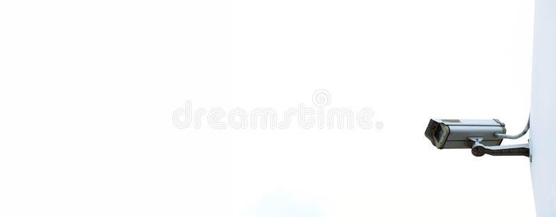 Transitoire et riz d'or sur le ciel bleu photos libres de droits