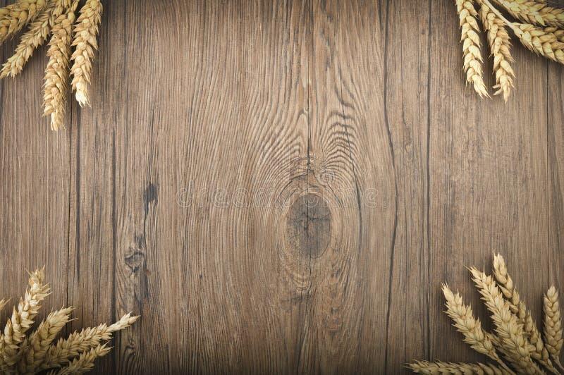 Transitoires de blé images libres de droits