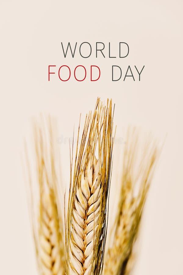 Transitoires de jour et de blé de nourriture du monde des textes images libres de droits