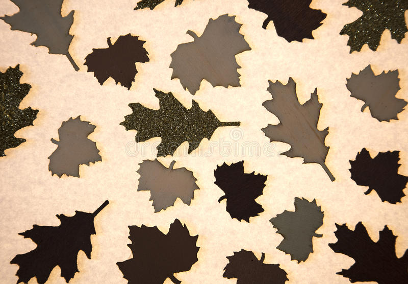 Translucent Leaf Shapes as Background. Various leaf shapes on lighted background paper stock photo
