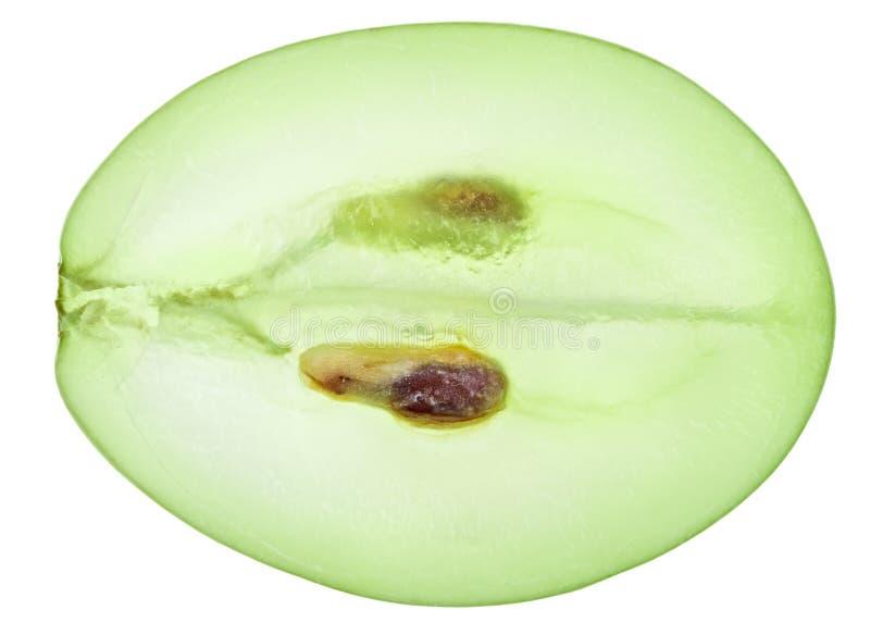 Download Translucent Slice Of Green Grape Fruit Stock Photo - Image: 16046606