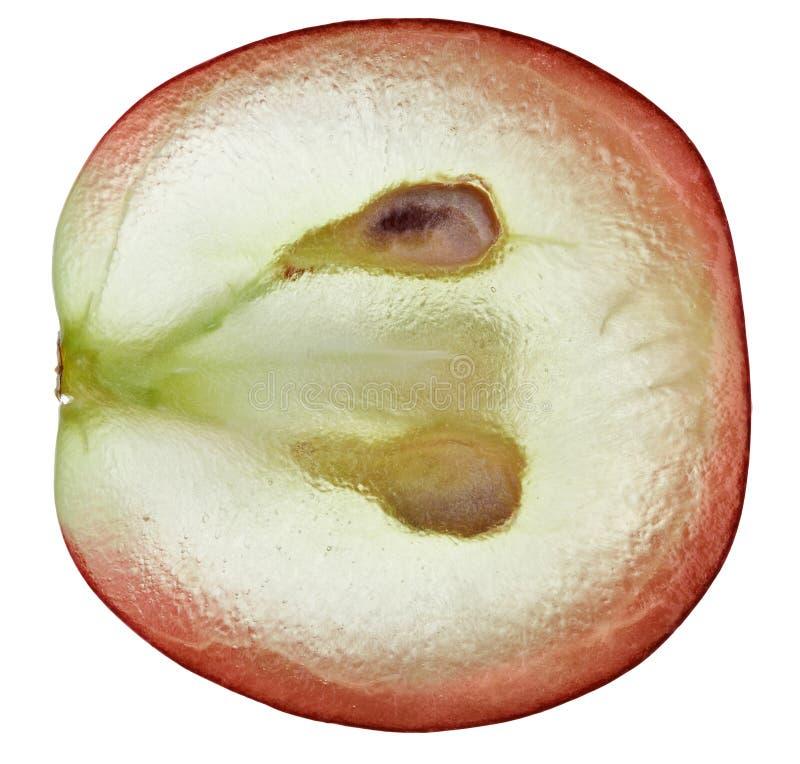 Translucent slice of red grape fruit. Macro isolated on white royalty free stock image