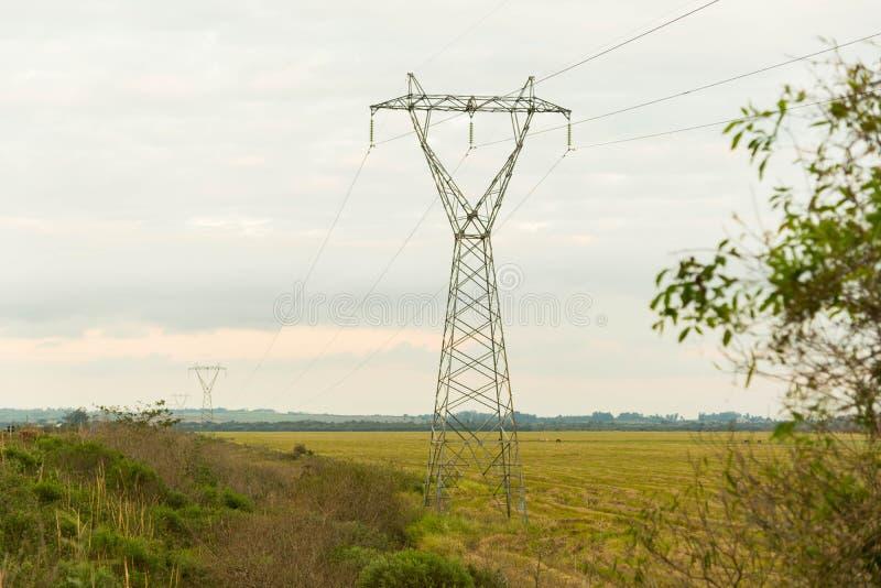 Transmissietorens op een het oogsten gebied stock foto's