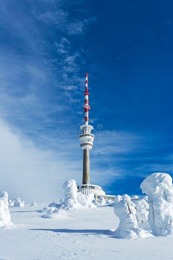 Transmissor de televisão Praded sob a tampa de neve em Jesenik, República Checa imagem de stock royalty free