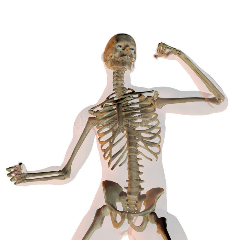 Transparant menselijk mannetje vector illustratie