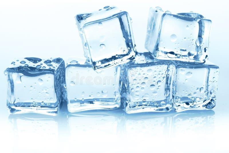 Transparante ijsblokjesgroep op witte achtergrond met waterdalingen royalty-vrije stock afbeeldingen