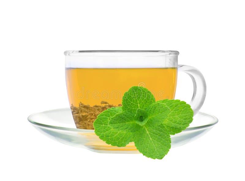 Transparante kop van groen thee en muntkruid stock foto
