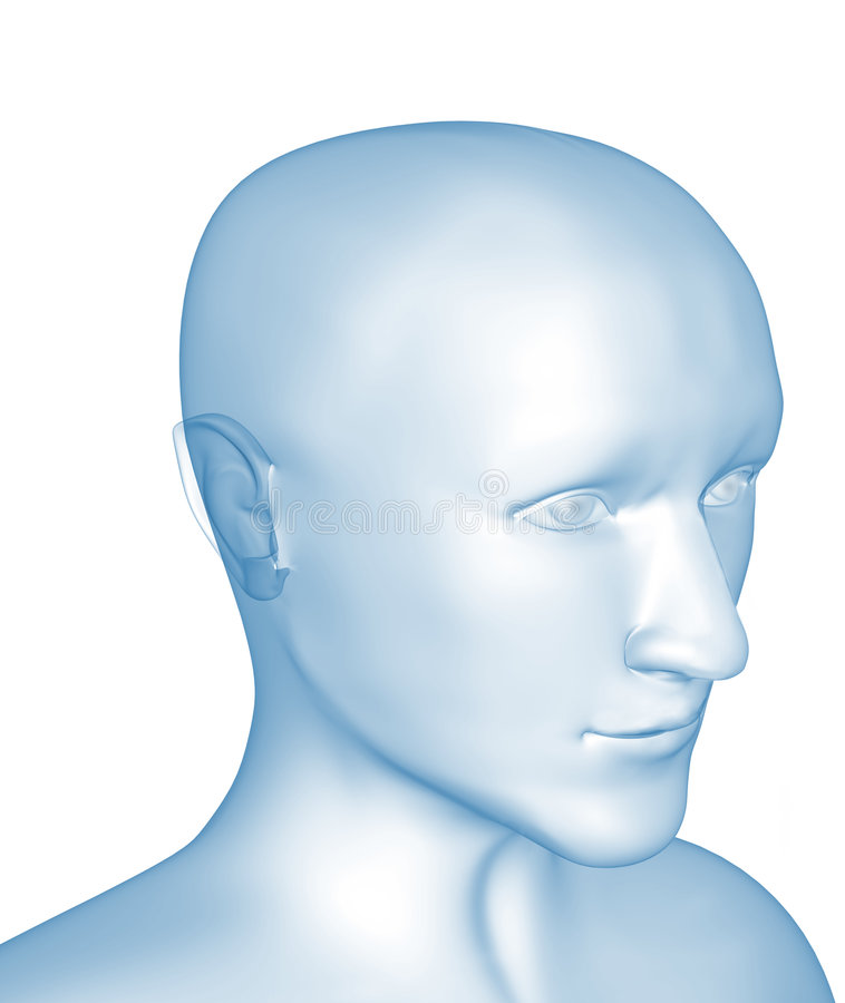 Download Transparent 3d Head Of The Man - X-ray Stock Illustration - Image: 6034304