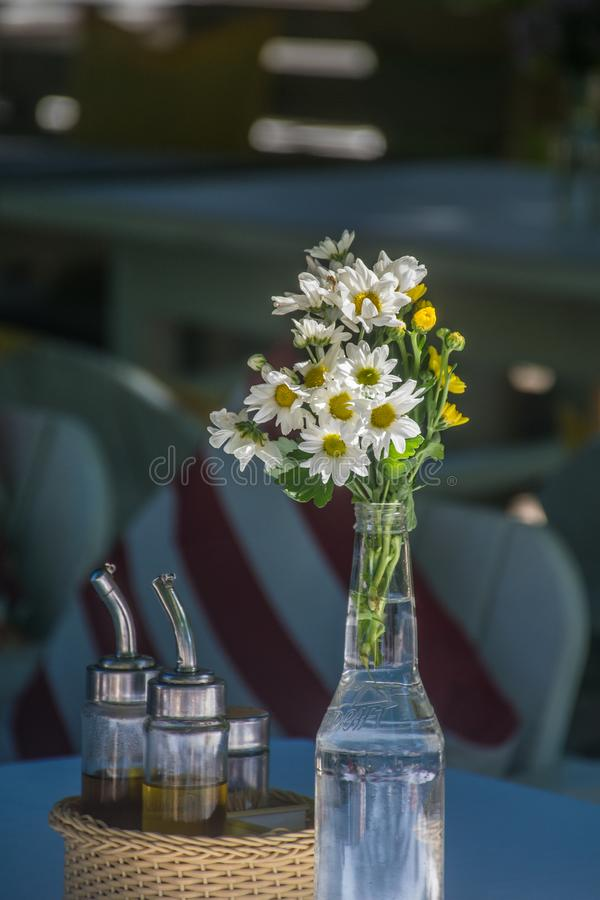 Transparent bottle filled with water carries a bouquet of daisies, a wood basket has some recipients with condiments and stock photography
